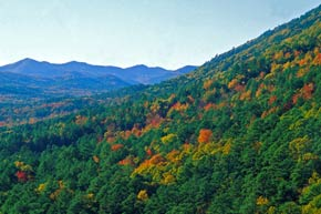The Oachita Mountains ablaze with Fall colors.